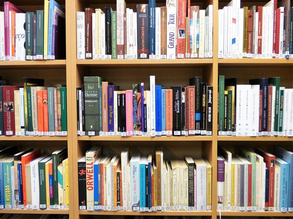 Librerie E Scaffali Economici.News Di Giugno Dal Sindacato Librai E Cartolibrai Sil